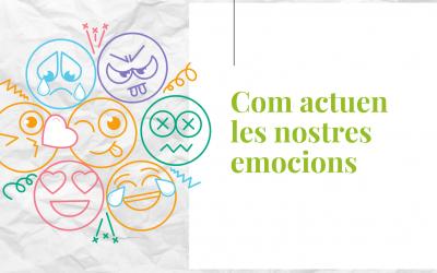 Com actuen les nostres emocions